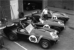 How Many Shelby AC Cobras Did Ford Build?