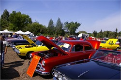Reasons To Attend A Car Show